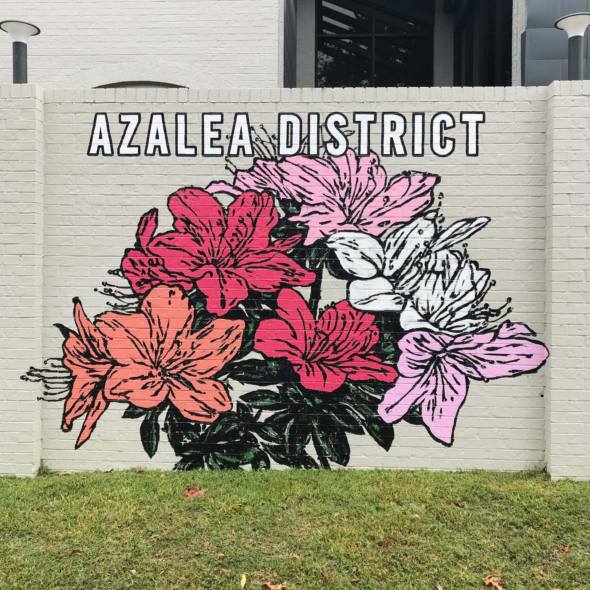 Azaleas - Dace Kidd - Mural Artist Tx